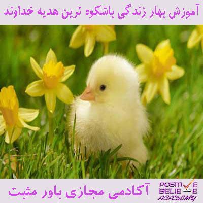spring 01 - بهار زندگی با شکوه ترین هدیه خداوند - تنها و تنها زمانی ما میتونیم بهار زندگیمون رو بسازیم که بتونیم خودمون رو تازه کنیم و بایستی ما همیشه خودمون به استقبال تغییر بریم