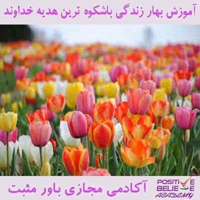 spring 05 - بهار زندگی با شکوه ترین هدیه خداوند - تنها و تنها زمانی ما میتونیم بهار زندگیمون رو بسازیم که بتونیم خودمون رو تازه کنیم و بایستی ما همیشه خودمون به استقبال تغییر بریم