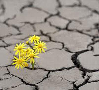 آرزوی روی دادن امری همراه با انتظار تحقق آن؛ چشمداشت امید بستن خواهان چیزی یا کسی شدن. امید داشتن امیدوار بودن؛ انتظار داشتن. آرزو، امل، امیدواری، انتظار، توقع، چشمداشت، رجا ≠ نومیدی، یاس