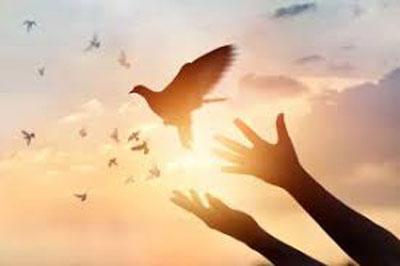 اصل انتظار دعا از روی تضرع و زاری. پرستش آفرین؛ ستایش آفرین، پرستش، دعا، سبحه، طاعت، عبادت، عبودیت، مناجات، نماز، ورد