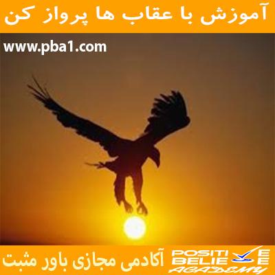 در آموزش با عقاب ها پرواز کن به مباحثی همچون:چرا باید با عقاب ها پرواز کرد؟، چقدر در زندگی دوست دارین عقاب باشین؟،