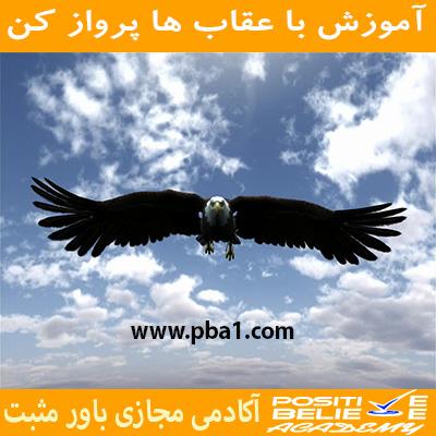 در آموزش با عقاب ها پرواز کن به مباحثی همچون:چرا باید با عقاب ها پرواز کرد؟، چقدر در زندگی دوست دارین عقاب باشین؟، رازتأثیرپذیری شما در زندگی، کمال همنشینی چگونه در شما اثر می کند؟، چگونه افراد مناسب زندگیمونو انتخاب کنیم؟، همواره باحرفهایها ارتباط داشته باشید، الگوبرداری از افراد موفق در فضای