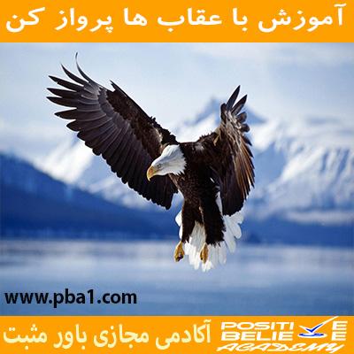 در آموزش با عقاب ها پرواز کن به مباحثی همچون:چرا باید با عقاب ها پرواز کرد؟، چقدر در زندگی دوست دارین عقاب باشین؟، رازتأثیرپذیریEagle flight