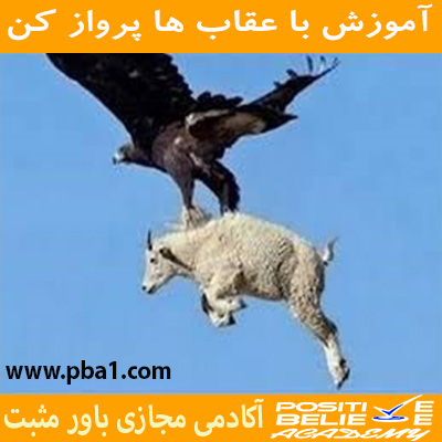 Eagle flight 06 - با عقاب ها پرواز کن - در آموزش با عقاب ها پرواز کن به مباحثی همچون:چرا باید با عقاب ها پرواز کرد؟; چقدر در زندگی دوست دارین عقاب باشین؟; رازتأثیرپذیری شما در زندگی; کمال همنشینی چگونه در شما اثر می کند؟; چگونه افراد مناسب زندگیمونو انتخاب کنیم؟; همواره باحرفهایها ارتباط داشته باشید; الگوبرداری از افراد موفق در فضای مجازی; باهم بررسی کردیم.