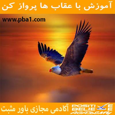 Eagle flight 09 - با عقاب ها پرواز کن - در آموزش با عقاب ها پرواز کن به مباحثی همچون:چرا باید با عقاب ها پرواز کرد؟; چقدر در زندگی دوست دارین عقاب باشین؟; رازتأثیرپذیری شما در زندگی; کمال همنشینی چگونه در شما اثر می کند؟; چگونه افراد مناسب زندگیمونو انتخاب کنیم؟; همواره باحرفهایها ارتباط داشته باشید; الگوبرداری از افراد موفق در فضای مجازی; باهم بررسی کردیم.