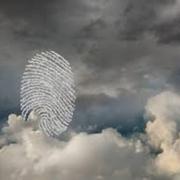در آموزش هویت و موفقیت به مباحثی همچون:هویت (شناخت چهارچوبها); هویت شخصی شما چیا میتونه باشه؟; هویت ما نیازمند به چه چیزایی داره؟; آیا هویت شما و رفتار شما یکی هستند؟; هویت و شخصیت شما چیست؟; بررسی کردیم.