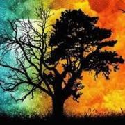 در آموزش دوگانگی در مسیر زندگی شما به مباحثی همچون: دوگانگی در زندگی چگونه به وجود میاید؟، دلیل اصلی به وجود اومدن دوگانگی چیه؟، عوامل مؤثر در به وجود اومدن دوگانگی: ۱)اولین عامل تاثیرگزار در ایجاد دوگانگی اینه که قناعت نمیکنیم ۲)نداشتن چهارچوب و مسیر مشخص، راهکاری مؤثر در از بین بردن دوگانگی، رو باهم بررسی می کنیم با ما همراه باشید:
