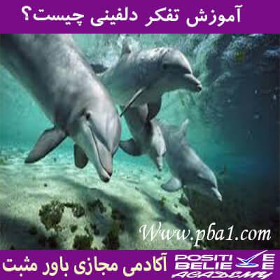 در آموزش تفکر دلفینی چیست به مباحث زیر می پردازیم:تفکر دلفینی چه کاربردی در زندگی شما داره؟ شناخت تفکر دلفینی چه کمکی به شما میکنه؟بررسی یک تحقیق درباره تفکر دلفینی:مهم ترین ارکان تفکر دلفینی: