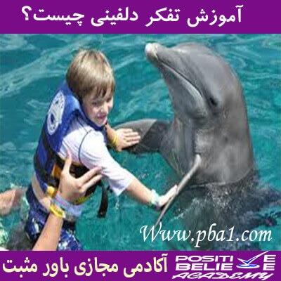 dolphin thinking 06 - تفکر دلفینی چیست؟
