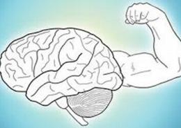 mental structure 260x185 - صفحه نخست سایت آکادمی مجازی باور مثبت