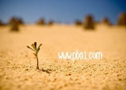 positive belief 0 260x185 - صفحه نخست سایت آکادمی مجازی باور مثبت