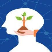 آموزش ذهنیت سازی چیست آکادمی مجازی باور مثبن