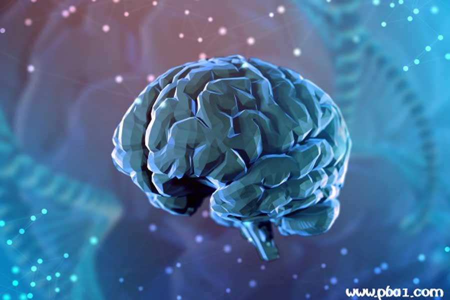 dynamic mind 02
