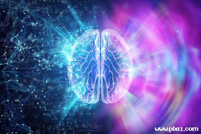dynamic mind 04
